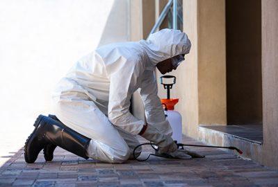 commercial pest control companies
